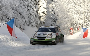 Picture Winter, Snow, Forest, Race, The hood, WRC, Rally, Rally, The front, Skoda, Fabia