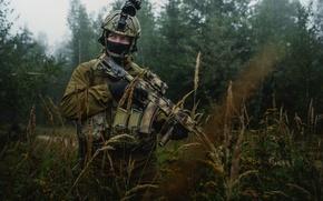 Picture field, forest, grass, soldiers, Kalashnikov, equipment