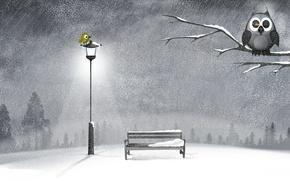 Picture winter, snow, night, tree, owl, shop, lantern, bird