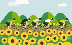 Wallpaper The peloton, figure, cyclists, The tour de France, sport