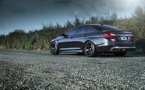 Picture BMW, wheels, black, rear, F10