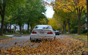 Picture road, autumn, leaves, BMW, White, Coupe, E46