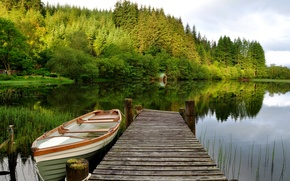 Picture forest, the sky, trees, lake, boat, the bridge