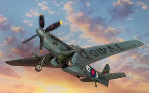 Picture the sky, the plane, British, North American, WW2, Mustang FR.6, photo reconnaissance