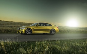 Picture the sun, yellow, bmw, BMW, drives, yellow, f82