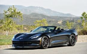 Picture auto, black, Corvette, Chevrolet, Tuning, Stingray, HPE700