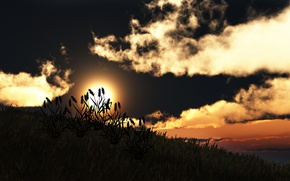 Picture grass, the sun, clouds, sunset, nature, hill, art, silhouettes