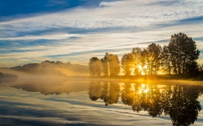 Picture the sky, clouds, trees, fog, lake, dawn