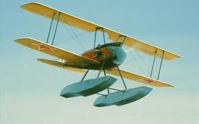Picture aircraft, war, art, aviation, ww1, Albatros