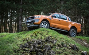 Picture forest, Ford, pickup, Ranger, Wildtrak, vnedorozhnik
