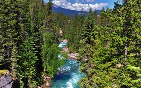 Picture forest, the sky, clouds, trees, mountains, river, Canada, Albert, Jasper National Park