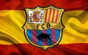 Picture flag, FC Barcelona, Leopard, Spain