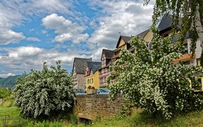 Picture the sky, grass, clouds, trees, mountains, home, Germany, bloom, Ediger-Eller