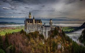 Picture autumn, forest, rock, Germany, Bayern, Germany, Bavaria, Neuschwanstein Castle, Neuschwanstein Castle