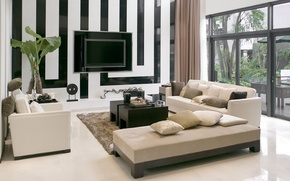 Picture style, strip, room, sofa, plant, TV, window