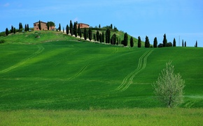 Picture the sky, grass, trees, hills, home, Italy, Tuscany