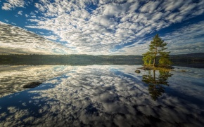 Picture the sky, water, clouds, reflection, tree, Bay, island, pine