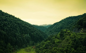 Wallpaper forest, trees, nature, hills, house