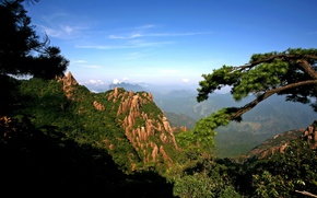 Picture the sun, mountains, branches, rocks, panorama, gorge