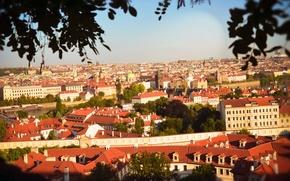 Picture trees, nature, the city, river, view, building, home, Czech Republic, tower, beautiful, panorama, bridges, Prague, …