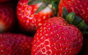 Picture macro, berries, food, strawberry, seeds, Wallpaper from lolita777