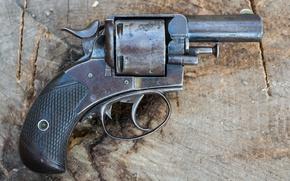 Picture gun, Bulldog, Webley, 450CF