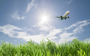 Wallpaper greens, field, the sky, grass, the sun, clouds, flight, the plane, the rise