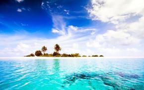 Picture tropics, palm trees, the ocean, island, The Maldives, Maldives, paradise