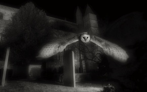 Picture flight, night, rendering, castle, owl, art, tombstones, black and white, monochrome, Wallpaper from lolita777
