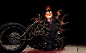 Picture Ghost Rider, Ghost rider, bike