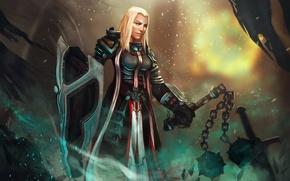 Picture girl, weapons, sword, art, shield, Diablo III, banners, Reaper of Souls, Crusader