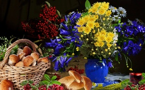 Picture flowers, berries, bouquet, Mushrooms, still life