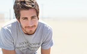 Picture actor, guy, Jake Gyllenhaal