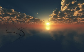 Picture surface, branch, art, sea, tree, horizon, clouds, sunset