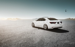 Picture Lexus, white, wheels, LS460