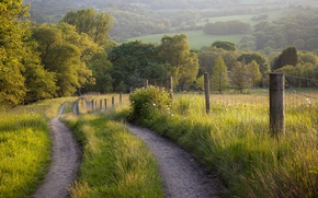 Wallpaper road, summer, landscape, the fence