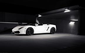 Picture Lamborghini, white, white, Gallardo, convertible, lambo, Lamborghini, 560-4