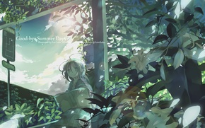 Picture leaves, girl, branches, book, sitting