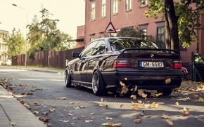 Picture Autumn, BMW, Leaves, BMW, Car, Autumn, E36, Stance