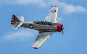Picture flight, North American, AT-6, Texan