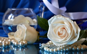 Picture roses, necklace, vase, white, beads, buds
