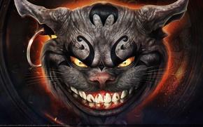 Picture cat, art, Alice, Alice, Kote, Madness, Returns, Cheshire, OmriKoresh