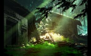 Picture forest, grass, rays, light, Fox, hut, destruction, desolation, cubs