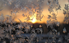 Picture cold, winter, glass, macro, sunset, frost