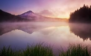 Wallpaper fog, lake, grass, mountains