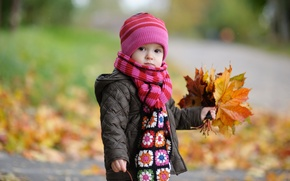 Wallpaper autumn, leaves, children, childhood, child, blur, boy, autumn, leaves, boy, blur, child, cute, cute, childhood, ...