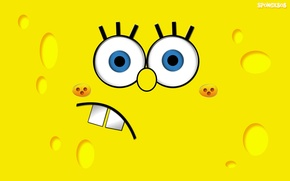 Wallpaper yellow, Mug, Bob, Sponge