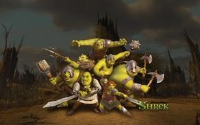 Picture gang, swords, Shrek forever