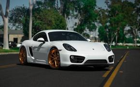 Picture Porsche, Cayman, Wheels, BLK