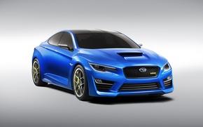 Picture Concept, Subaru, The concept, WRX, Subaru, the front